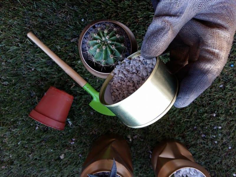 reciclar latas de conservas para convertirlas en un terrario