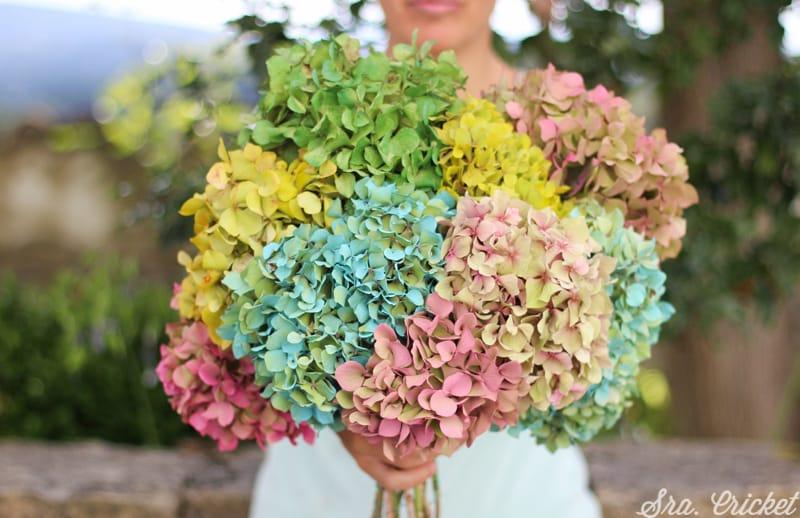 flores-pintadas-con-pintyplus