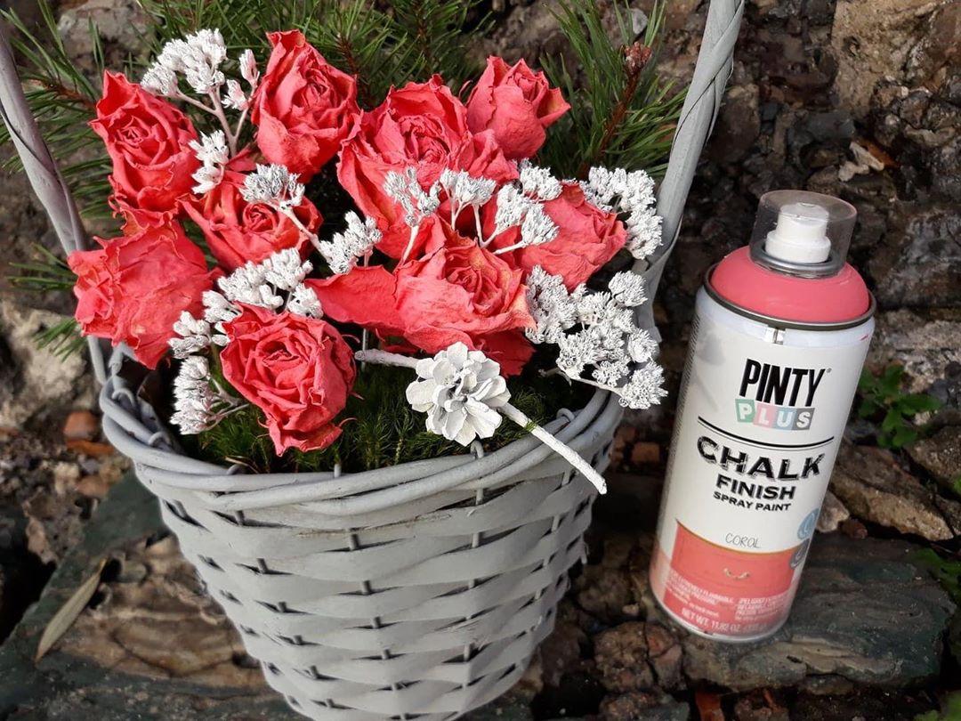 color coral tendencia decoracion hogar Pintyplus Pintura Spray